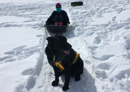 Marna Sledding with Texas Tea 2018-02-28