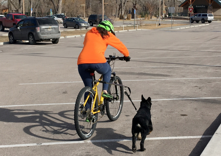 Tabaliah Learning Bicycle Attachment 2017-02-14