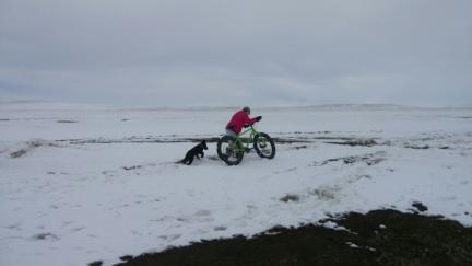 Tabaliah Mud Snow Bicycle 2017-01-20