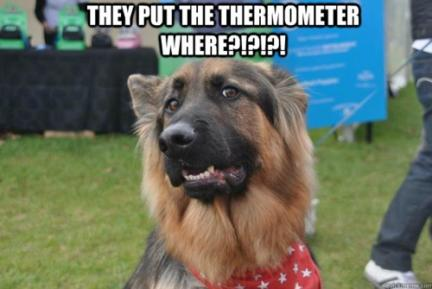GSD thermometer